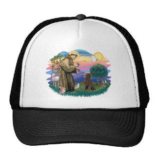 Poodle Standard Chocolate Trucker Hats
