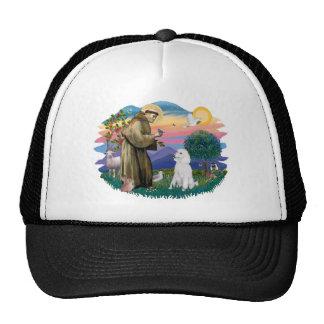 Poodle Standard White Mesh Hat