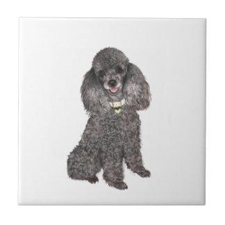 Poodle - Toy /Miniature Silver Tile