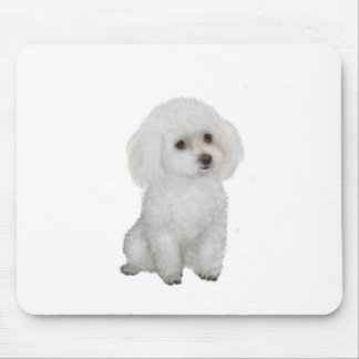 Poodle - white 1 mouse pad