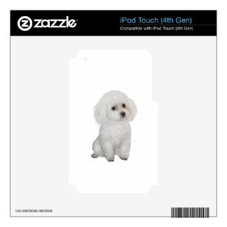 Poodle - white 1 skins for iPod touch 4G