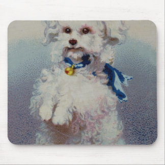 Poodle with blue ribbon mouse pad