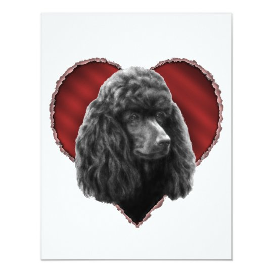 Poodle with Heart Card