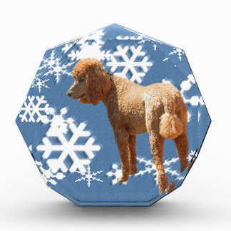 POODLE WITH SNOW FLAKES ACRYLIC AWARD