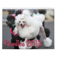 Poodles 2013 Calender Wall Calendar