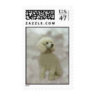 Poodles Are Heavenly Postage Stamp