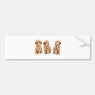 Poodles Bumper Stickers