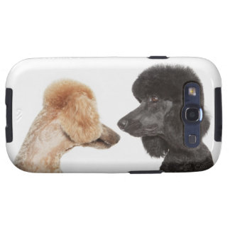 Poodles examining each other galaxy s3 covers