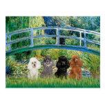 Poodles (four) - Bridge Post Cards