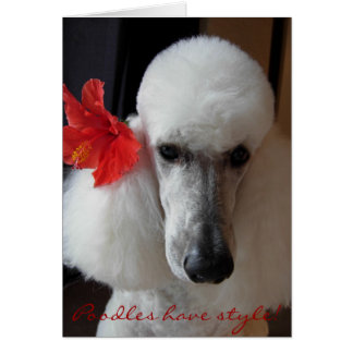 Poodles have style! card