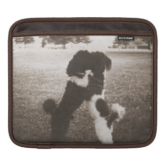 Poodles Hugging iPad and Laptop Sleeve Sleeve For iPads
