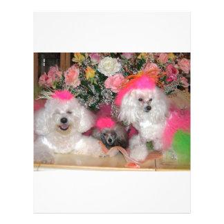 Poodles Letterhead