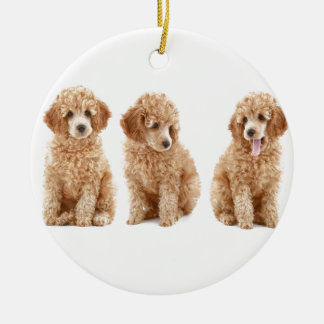 Poodles Christmas Tree Ornament