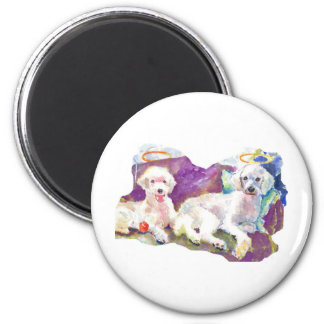 Poodles Poodles Everywhere with lots of kisses Magnet