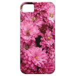 Poofs rosados iPhone 5 carcasa