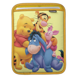 iPad Sleeve with Winnie the Pooh, Tigger, Eeyore and Piglet Group Photo design