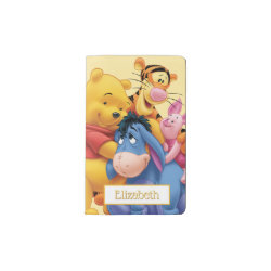 Winnie the Pooh, Tigger, Eeyore and Piglet Group Photo