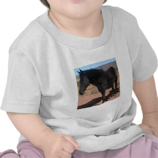 pooka enlarged png camiseta