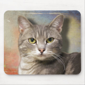 Pookie the Gray Cat Mousepad
