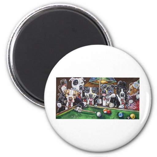 Pool Dogs Magnet
