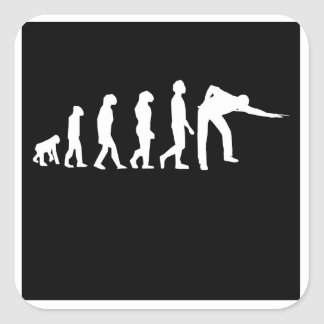 Pool Player Evolution Stickers