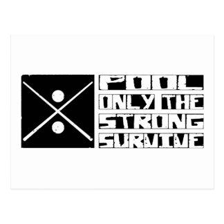 Pool Survive Postcard
