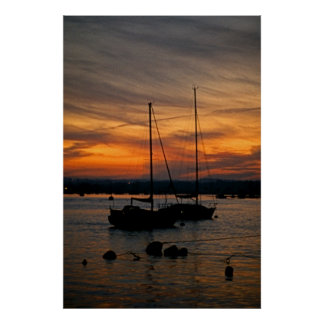 Poole Harbour Sailing Boats at Sunset Poster