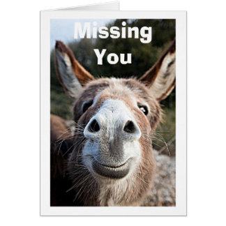 POOR DONKEY MISSES YOU/NOT VERY HAPPY ABOUT THAT CARD