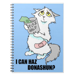Poor Kitty Dreamboat Notebook