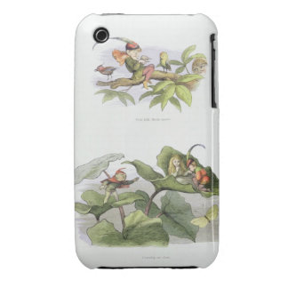 Poor little Birdie teased, and Courtship cut short iPhone 3 Case-Mate Case