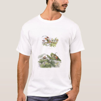 Poor little Birdie teased, and Courtship cut short T-Shirt