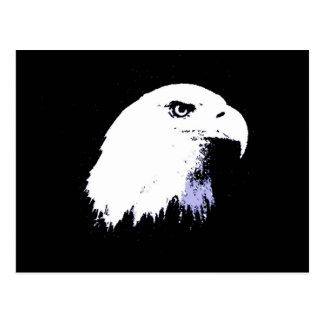 Pop Art Bald Eagle Postcard