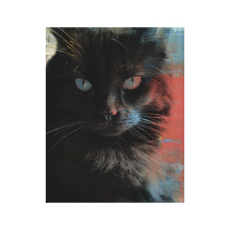Pop Art Black Cat Red White Blue background Canvas Print