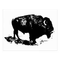 Pop Art Black White Buffalo Bison Silhouette Postcard