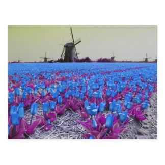 Pop Art Blue Tulips Windmills Landscape Postcard