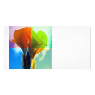 Pop art Flower in different color quads retro look Photo Card