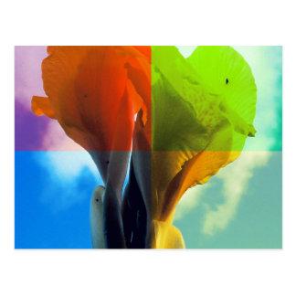 Pop art Flower in different color quads retro look Postcard