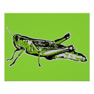 Pop Art Green Grasshopper Poster