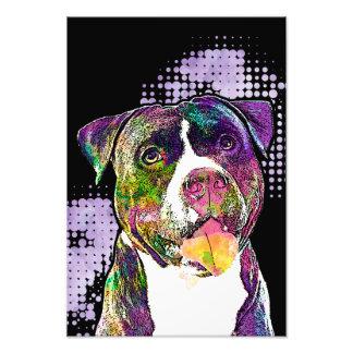 Pop Art Pit Bull Photo Print