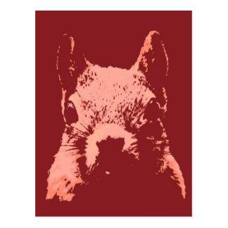 Pop Art Squirrel Postcard