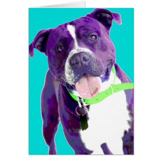 Pop ART Staffordshire Bull Terrier Card