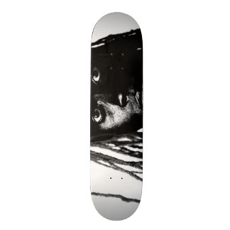 pop blacq skateboard