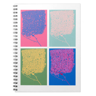 Pop Neuroscience Notebook