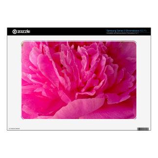 Pop of Pink Peony Petals Samsung Series 5 Skin Samsung Chromebook Skin