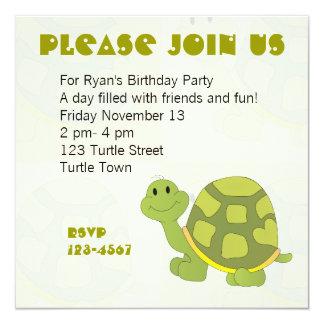 Pop Turtle Announcement
