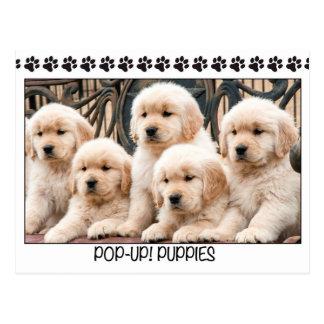 Pop-Up! Puppies Postcard