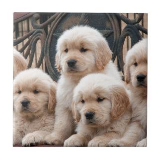 Pop Up! Puppies Ceramic Tiles