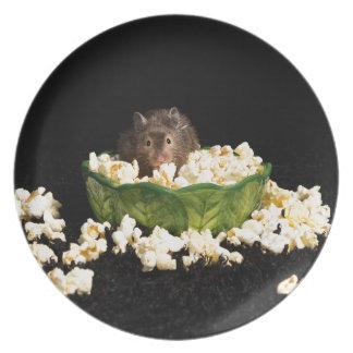 Popcorn lover dinner plate