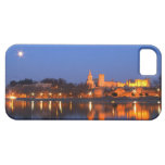 Pope's Palace in Avignon and the Rhone river at iPhone 5 Cases