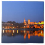 Pope's Palace in Avignon and the Rhone river at Tiles